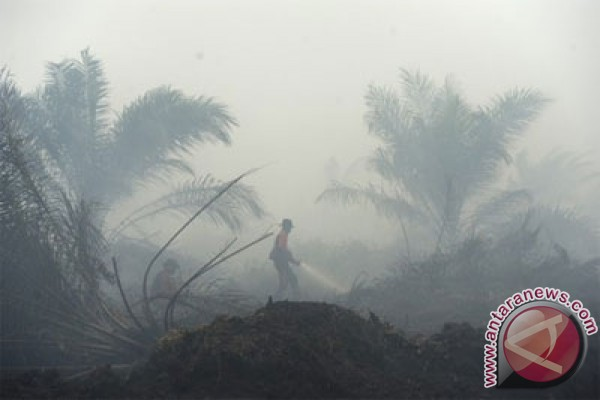 Officers from Mangala Agni extinguish the fire that burned the rest of the oil palm plantation in Sungai Aur, Muaro, Saturday (September 12, 2015). (ANTARA/Wahyu Putro A.)