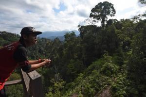 Penjaga hutan Kusterman mengamati suasana hutan dari menara pantau Hutan Adat Wehea di Kutai Timur, Kalimantan Timur, Minggu (14/8). [ANTARA FOTO/ Wahyu Putro A]