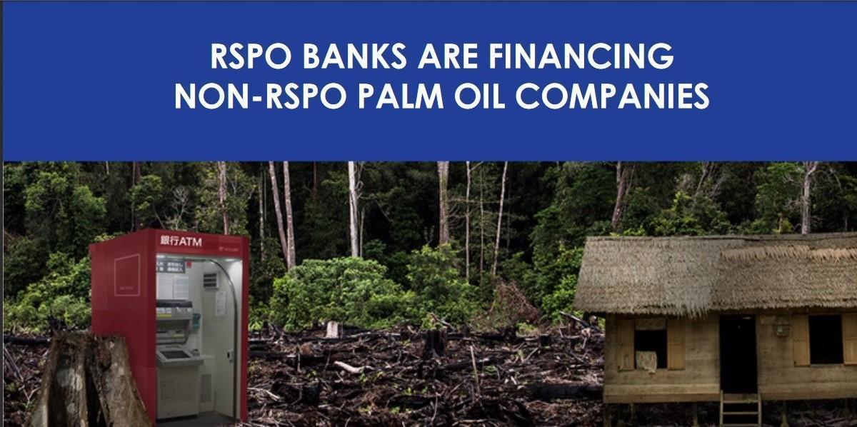 RSPO banks - kopie